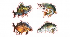 """Rybárska samolepka """"4 ryby"""""""