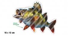 Rybárska samolepka OSTRIEŽ 2 L