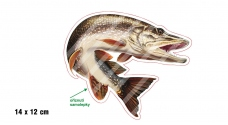 Rybárska samolepka ŠŤUKA 2 P