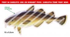Rybárska samolepka TRESKA L