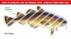 Rybárska samolepka TRESKA P